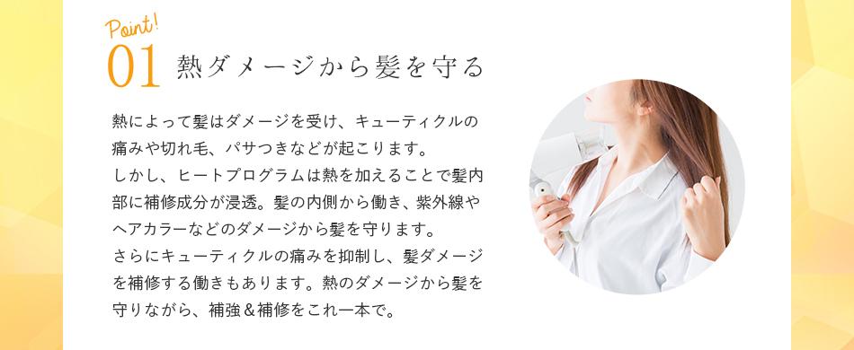 point01.熱ダメージから髪を守る