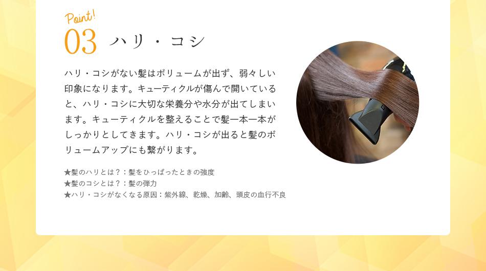 point03.ハリ・コシ