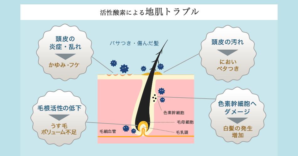活性酸素による地肌トラブル